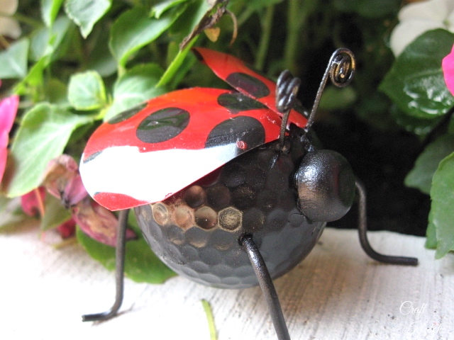 Completed ladybug with flowers behind