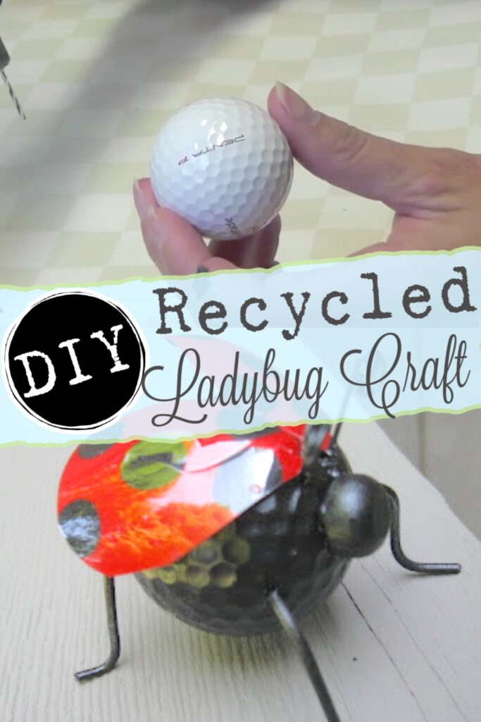 DIY recycled ladybug craft using recycled items