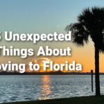 5 unexpected things about moving to florida palm tree with sunrise in background overlooking river